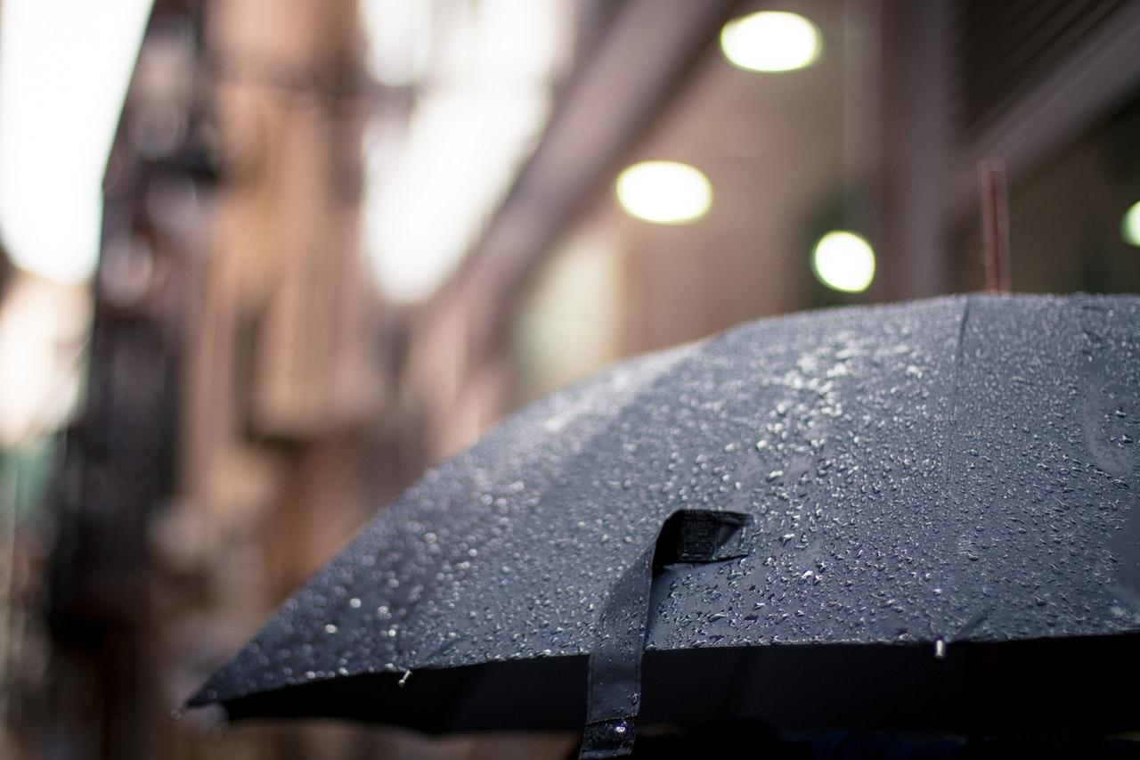 memilih payung